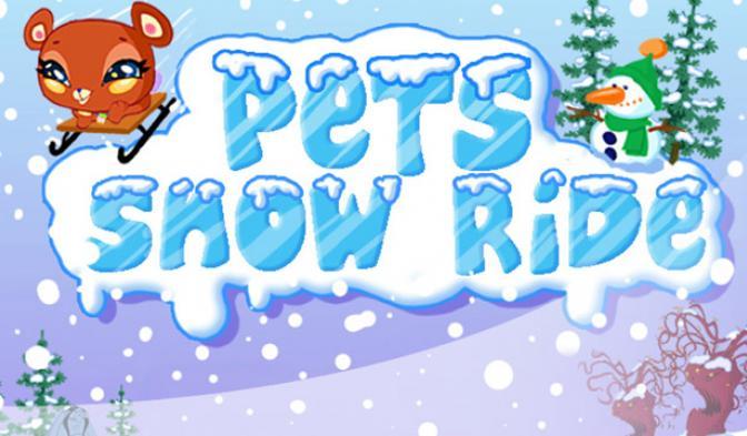 Снежная пробежка домашних животных